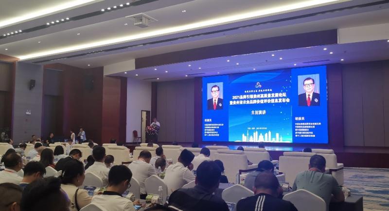 贵州产业技术发展研究院成功举办品牌引领贵州优势特色产业高质量发展高峰论坛